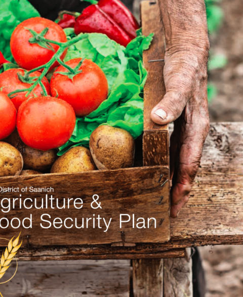 District of Saanich Agriculture and Food Security Plan