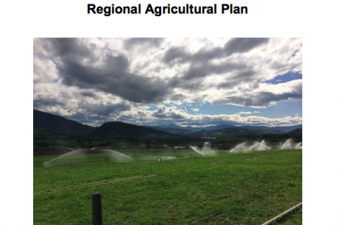 Regional District of North Okanagan Regional Agricultural Plan