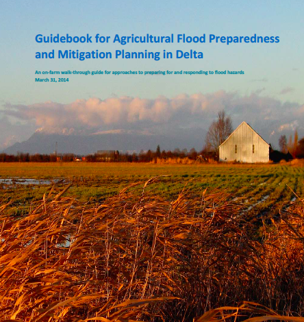Guidebook for Agricultural Flood Preparedness and Mitigation Planning in Delta