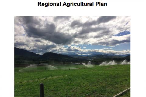 Regional District of North Okanagan Regional Agricultural Plan
