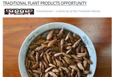 Kitsumkalum First Nation Agri-Food Opportunities and Business Plan